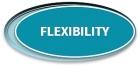 Flexibility Logo