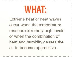 Heat Advice