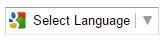 Select Lnaguage