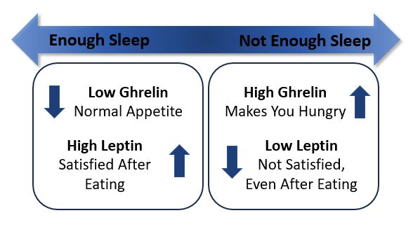 Ghrelin Leptin Chart & Sleeping