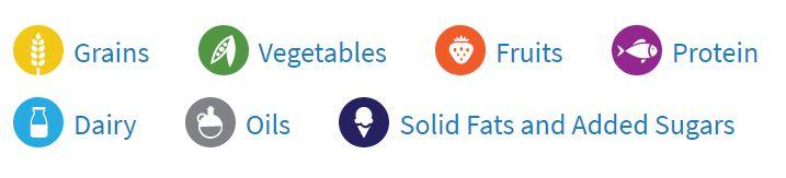 7 Basic Food Groups