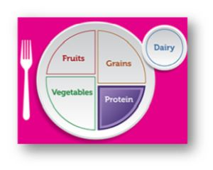 Image of Plate showing Protein Nutrition