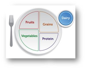 Image of Plate showing Dairy