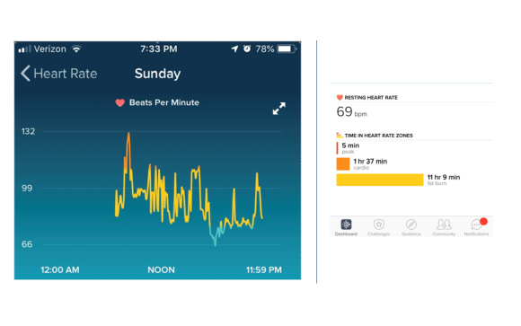 Heart Rate on Fitbit App