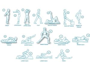 flexibility workout routine